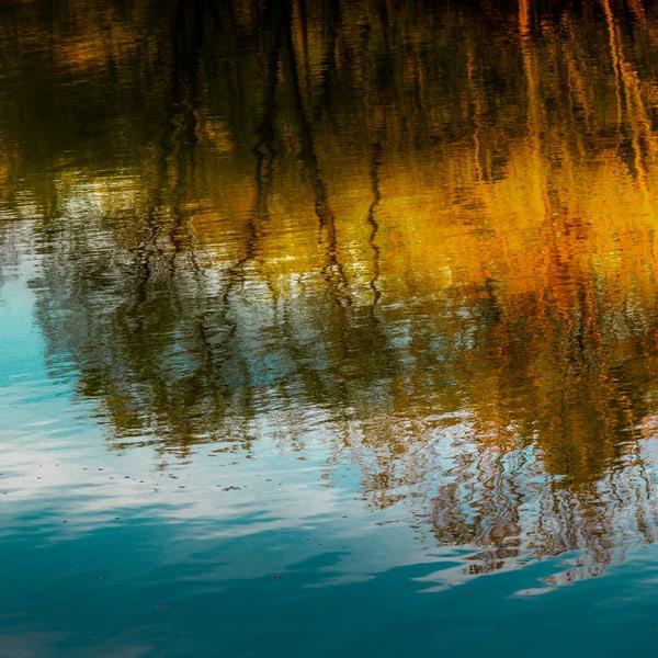 Reflection 8 Art | Moshe Volcovich