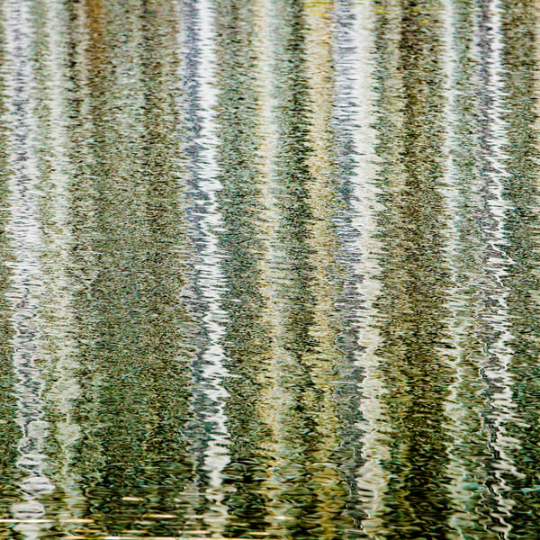 Reflection 9 Art | Moshe Volcovich