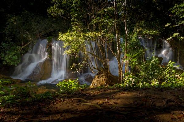 Lacandon Jungle Art   Moshe Volcovich