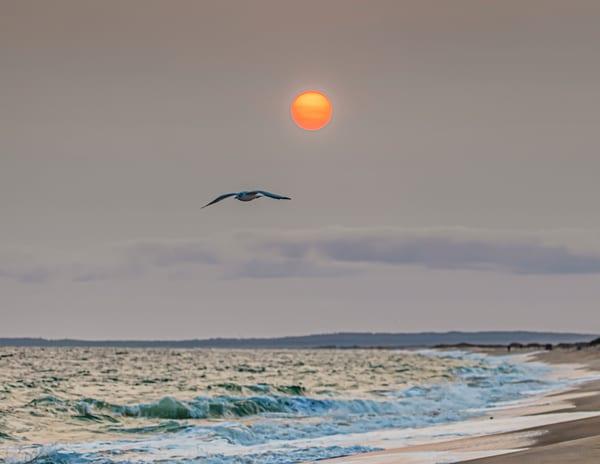 South Beach Smoke Gull Art | Michael Blanchard Inspirational Photography - Crossroads Gallery