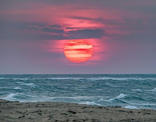 South Beach Fall Sunrise And Gull Art | Michael Blanchard Inspirational Photography - Crossroads Gallery
