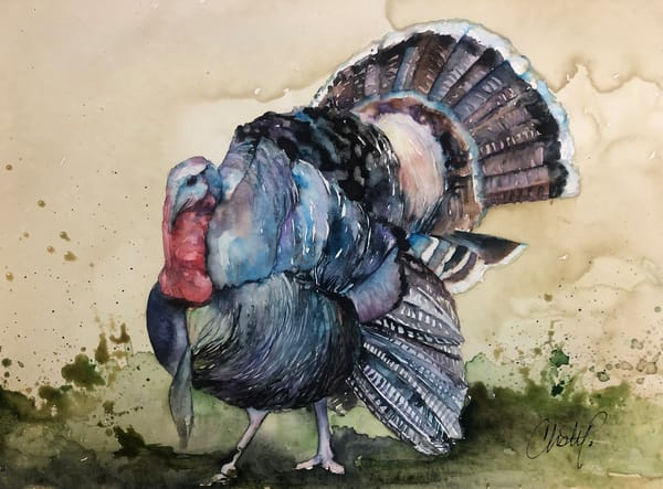 Wild Turkey Art | Christy! Studios