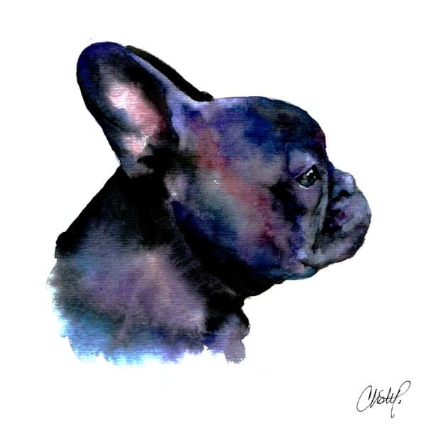 Black French Bulldog Art | Christy! Studios