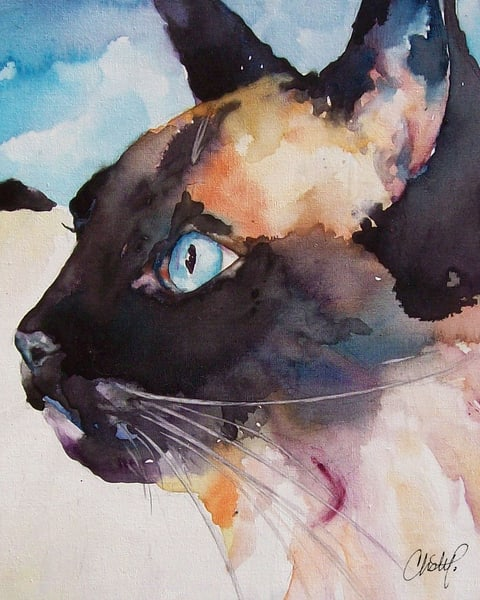 Seal Point Siamese Cat Art | Christy! Studios