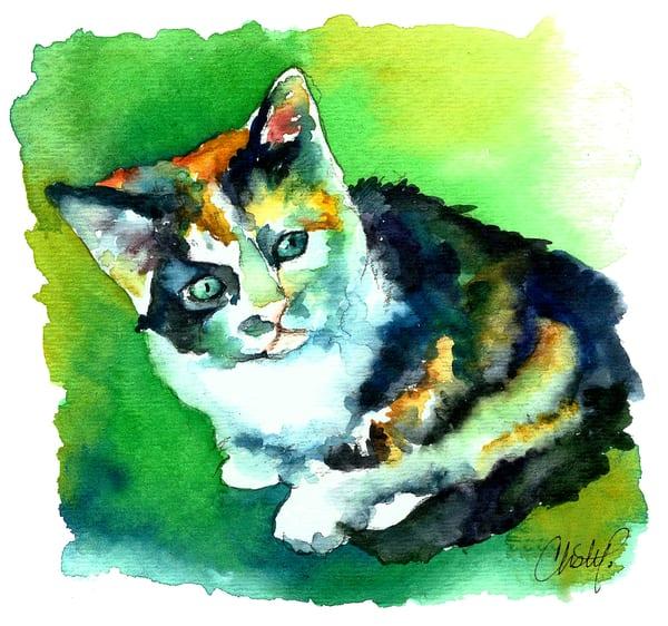 Tortoise Shell Kitten Art | Christy! Studios