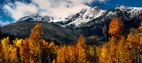 Image of Aspen in Snow Covered Colorado Mountains