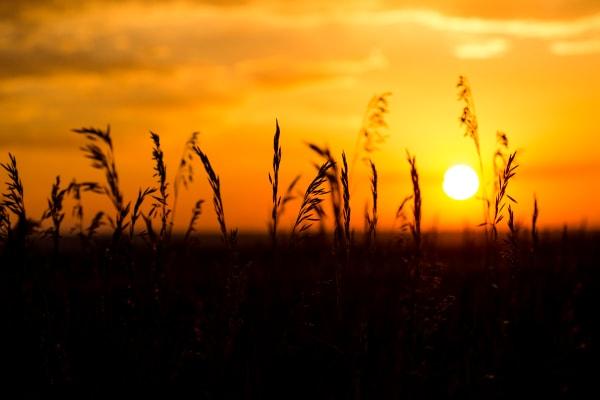 sunrise Photograph on the prairie in Colorado