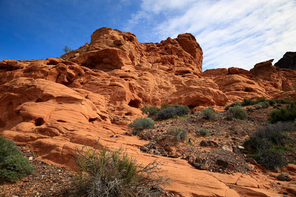A Day In Red Rock Canyon Photography Art   Julie Williams Fine Art Photography