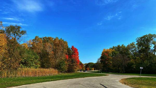 Michigan Splendor