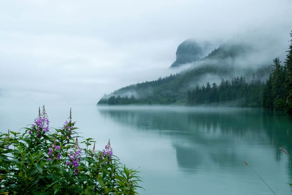 Fog Over Lake Chilkoot Photography Art | Greg Starnes Phtography
