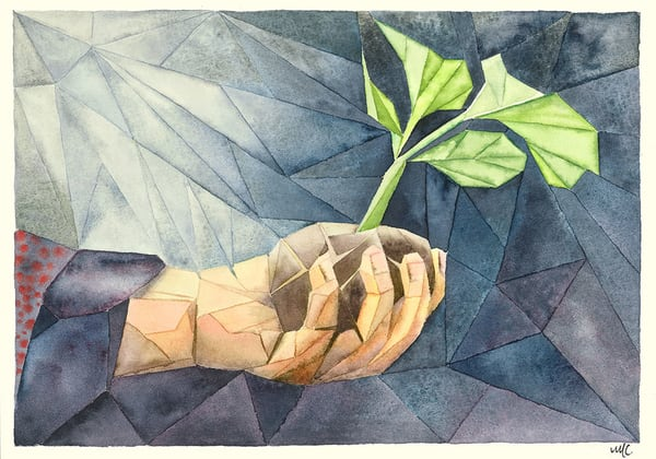 """Sprout In Hand"" fine art print by Matthew Campbell."