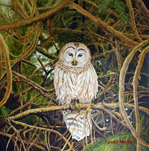 Naturally, Framed! Art   Lynda Moffatt Fine Arts