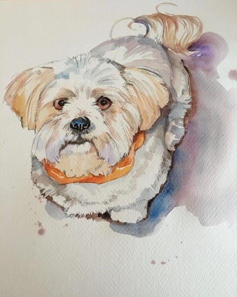 Puppy Eyes Art | susie mccolgan art