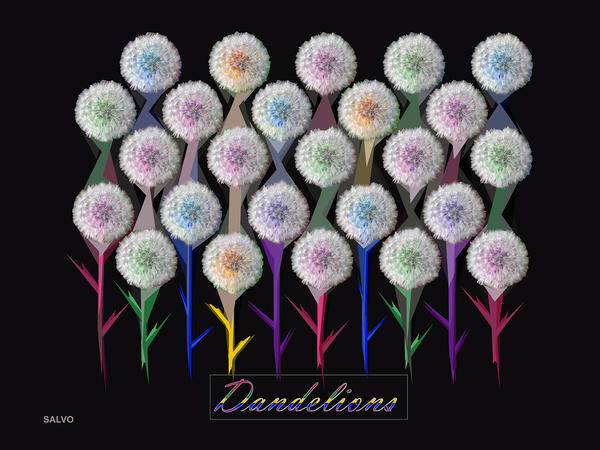 J Salvo   Dandelions Art | Branson West Art Gallery - Mary Phillip