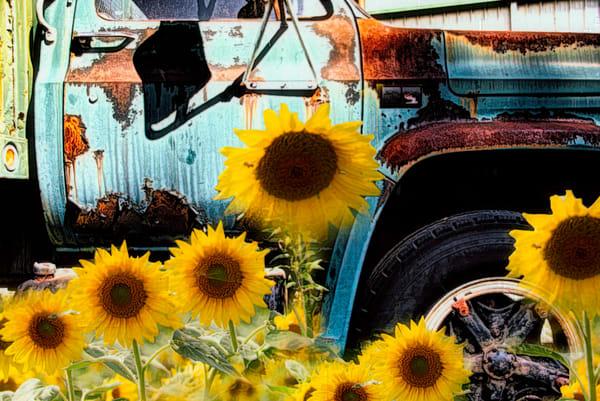 Rustic & Vintage