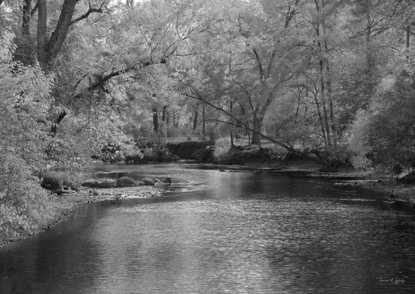 Autumn River, 2020. Photograph by Thomas Wyckoff.