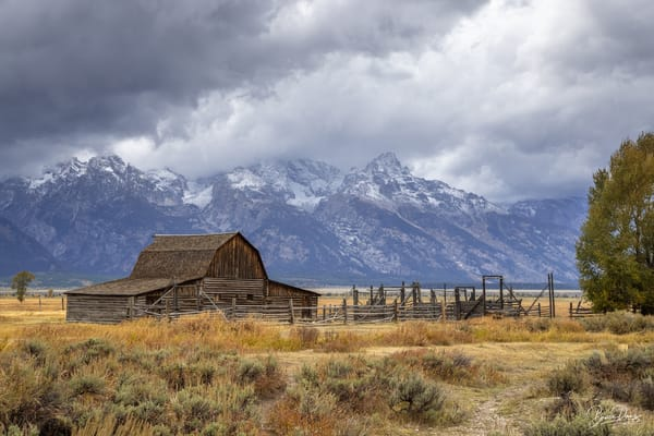 Old Barn in Grand Teton National Park II