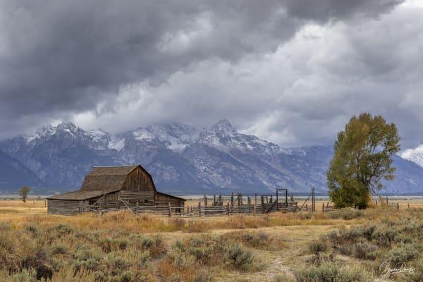 Old Barn in Grand Teton National Park III