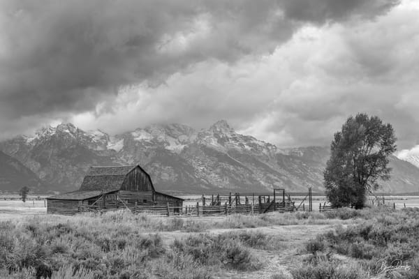 Old Barn in Grand Teton National Park III (B&W)