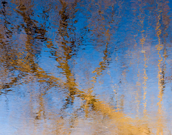 Surface Water Painting, photo by Jeremy Simonson.
