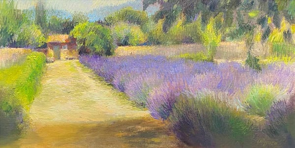 Summer In Provence Art | Fountainhead Gallery