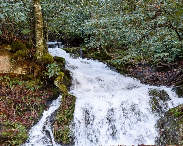 Waterfall On Newfound Gap Photography Art | N2 the Woods Photography