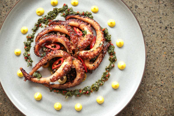 Octopus On A Plate Photography Art | Julie Williams Fine Art Photography
