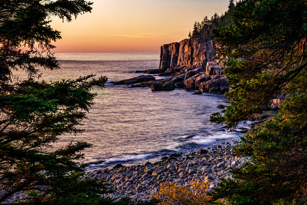 Otter Cliff Through The Trees | Shop Photography by Rick Berk