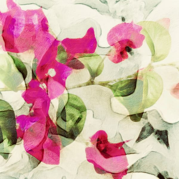 Brightly Photography Art | Artscapes by Renee