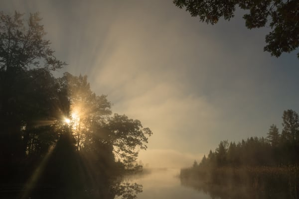 Foggy Sunburst, Huron River