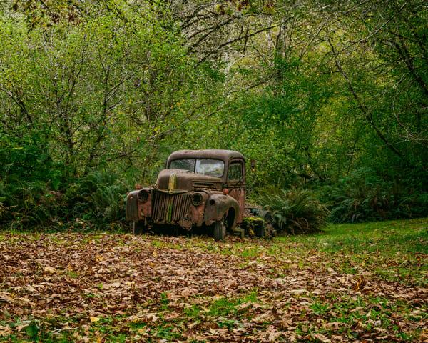 Old Ford Truck, Brooklyn, Washington