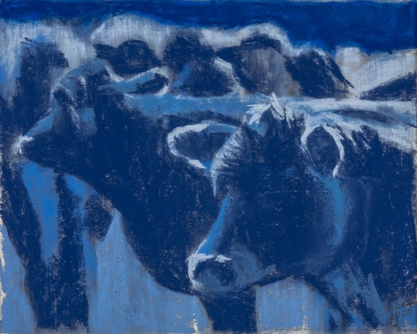 Cows Blue Art | capeanngiclee