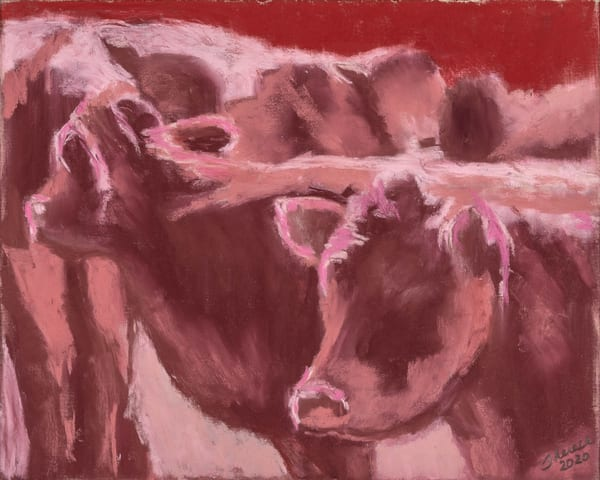 Cows Red Art | capeanngiclee