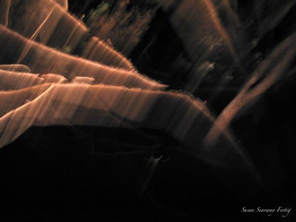 Night Trees 5 Art | Susan Searway Art & Design
