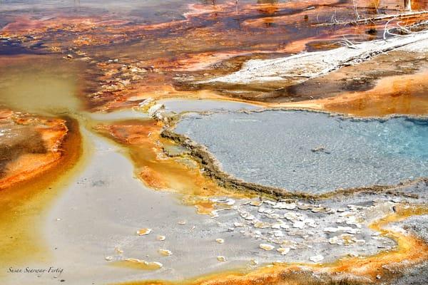 Minerals 24 Art   Susan Searway Art & Design