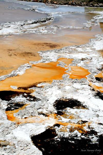Minerals 19 Art   Susan Searway Art & Design