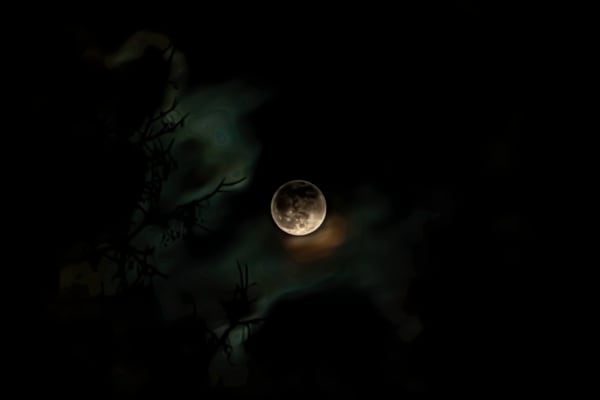 Full Wolf Moon clouds, branches, reflections