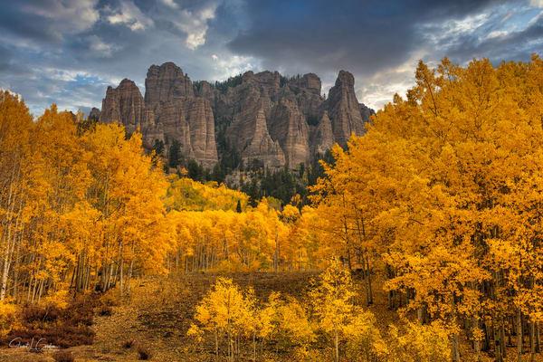 Latest Creations: Colorado Autumn 2020