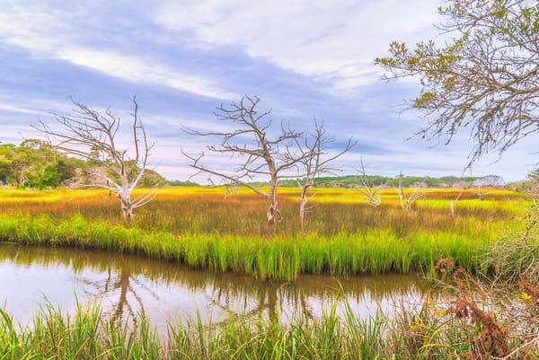 Jekyll Island Inlet | Susan J Photography