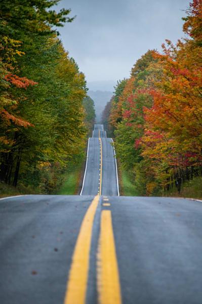 Long road down back road