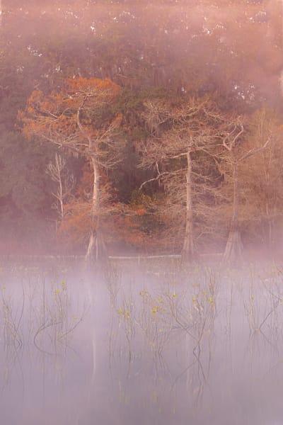Through Photography Art | Visions By Dan McCarthy