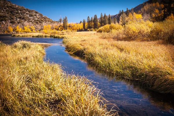 """Mountain Stream in the Fall"" print | Jim Parkin Fine Art Photography"