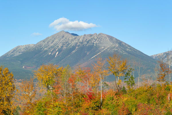 Close-up of Katahdin