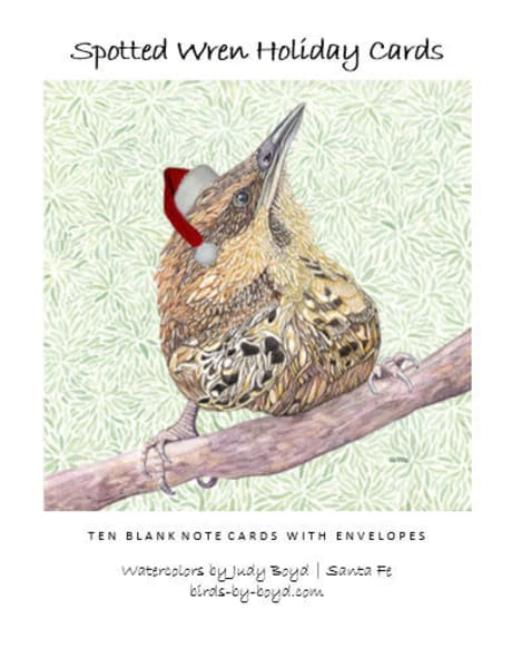 Spotted Wren Holiday Cards Set | Birds by Boyd