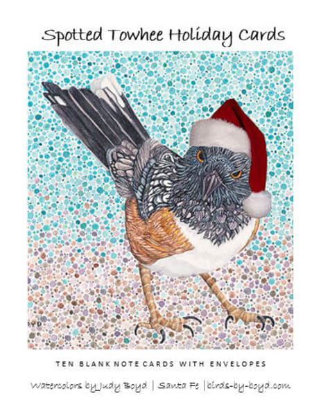 Spotted Towhee Holiday Cards Set | Birds by Boyd