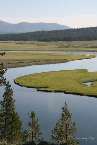 Yellowstone National Park 8 Art | Susan Searway Art & Design