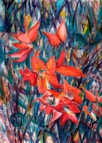 Orange Flowers  Art   Marisela Bracho