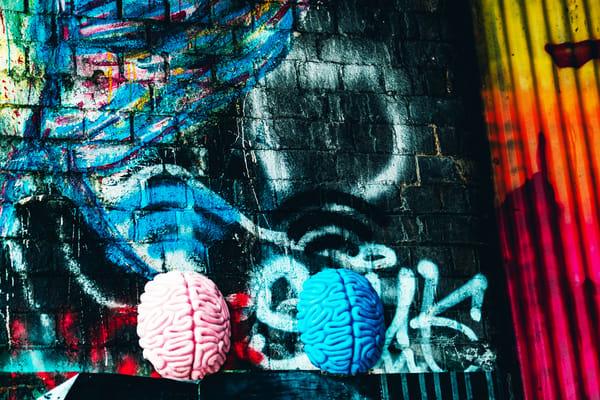 Right Brain, Left Brain Photography Art | LenaDi Photography LLC