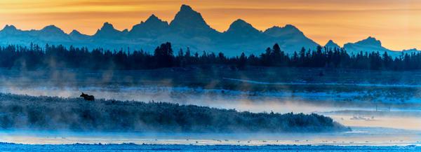 24 V66 Best   Photography Art | Swan Valley Photo