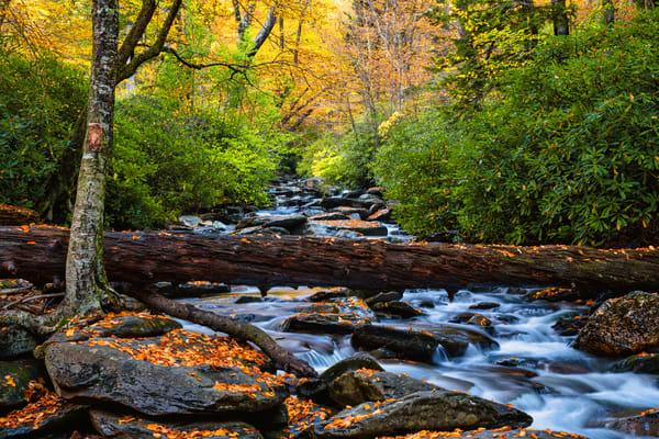 Smoky Mountains Refuge - Great Smoky Mountains National Park fine-art photography prints